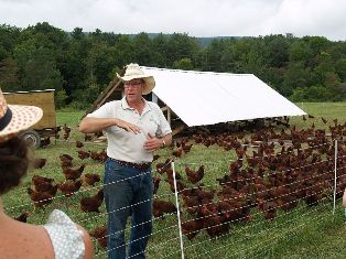 Joel Salatin holds a hen during a tour of Polyface Farm.